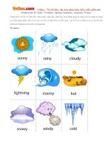 Flashcards for Kids: Weather, Spring, Summer, Autumn, Winter