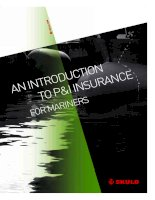 An introduction to P and I insurance for mariners