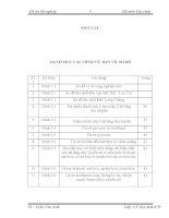 """đồ án tốt nghiep nganh dia chat: Đặc điểm và các yếu tố địa chất khống chế quặng hoá đồng khu vực Lùng Thàng  Bát Xát  Lào Cai""""."""