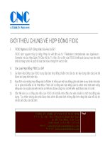CNC gioi thieu ve FIDIC vn