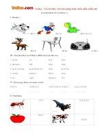Bài tập Tiếng Anh lớp 3 Lesson 4 sách Let's learn 3