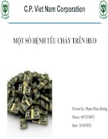 HOI THAO CAC BENH TIEU CHAY