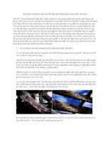 Giải pháp chống ăn mòn cho kết cấu thép trong môi trường biển Việt Nam