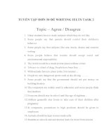 IELTS writing task 2 dạng đề agree or disagree