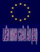 bài thuyết trình địa lý lớp 11 EU