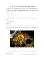 Cách nấu chè hạt sen long nhãn thơm ngon bổ dưỡng
