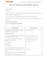 Giáo án Toán 4 chương 1 bài 5
