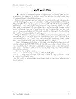 Luận văn kế toán tổng hợp tại công ty TNHH tiên sơn thanh hoá (các nghiệp vụ)