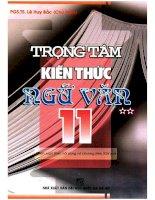 Trọng tâm kiến thức ngữ văn 11 tập 2 lê huy bắc