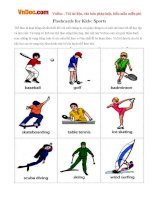 Flashcards for Kids: Sports