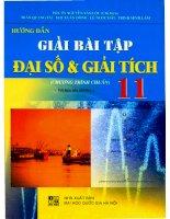 Hướng dẫn giải bài tập đại số  giải tích 11 chương trình chuẩn trần văn lộc