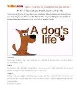Bé học Tiếng Anh qua truyện ngắn: A dog's life