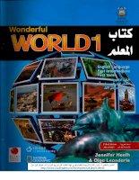 wonderful world 1 teacher s book