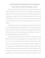 Dấu ấn văn hóa Sa Huỳnh trong địa bàn phân bố của văn hóa Đông Sơn qua di tích khảo cổ học Bãi Cọi (Nghi Xuân  Hà Tĩnh)