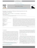 Strategies for selection of thermochemical processes for the valorisation of biomass