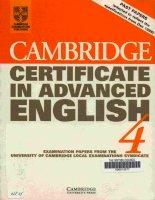 12   cambridge certificate in advanced english   4   1999