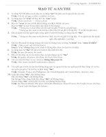 MẠO TỪ  articles (lý thuyết)