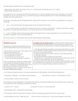 Tổng hợp hướng dẫn làm part 7 trong TOEIC