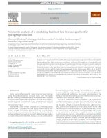 Parametric analysis of a circulating fluidized bed biomass gasifier for hydrogen production