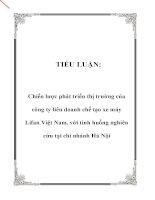 Tiểu luận Chiến lược phát triển thi trường của công ty liên doanh chế tạo xe máy Lifan Việt Nam với tình huống nghiên cứu tại chi nhánh Hà Nội