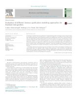 Evaluation of different biomass gasification modeling approaches for fluidized bed gasifiers