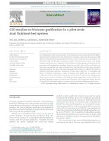 CFD studies on biomass gasification in a pilotscale dual fluidizedbed system