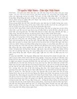 54 DÂN TỘC VIỆT NAM ( TẤT CÁ CÁC ĐẶC ĐIỂM TỪNG DÂN TỘC MỚINHẤT VÀCHI TIẾT NHẤT)