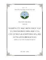Nghiên cứu đặc điểm thực vật và thành phần hóa học của cây ụp đất (kaempferia sp ), họ gừng (zingiberaceae)