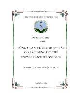 Tổng quan về các hợp chất có tác dụng ức chế enzym xanthin oxidase