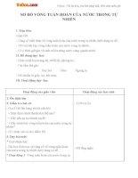 Giáo án Khoa học 4 bài 23