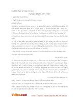 Soạn bài lớp 6: Ngôi kể trong văn tự sự
