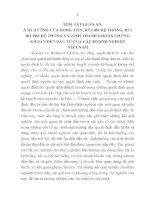 ẢNH HƯỞNG CỦA DÒNG TIỀN, RỦI RO HỆ THỐNG, RỦI RO PHI HỆ THỐNG VÀ TÍNH THANH KHOẢN CHỨNG KHOÁN ĐẾN ĐẦU TƯ CỦA CÁC DOANH NGHIỆP VIỆT NAM
