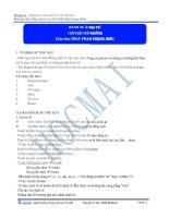 0101 noun pronoun TLBG pdf