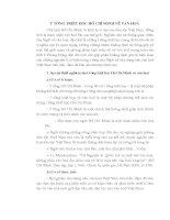 TÌM HIỂU tư TƯỞNG TRIẾT học hồ CHÍ MINH về văn hóa