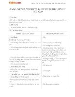 Giáo án Khoa học 5 bài 4