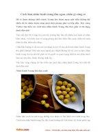 Cách làm nhân bánh Trung thu ngon, nhân gì cũng có
