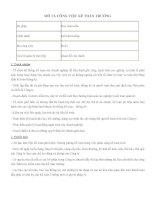 Bảng mô tả công việc của Kế toán trưởng
