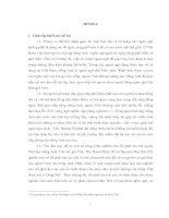 Tiểu luận lỗi phát âm tiếng anh của sinh viên việt nam trường hợp sinh viên đại học đồng nai