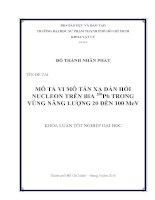 Mô tả vi mô tán xạ đàn hồi nucleon trên bia 208pb trong vùng năng lượng 20 đến 100 mev