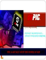 DSPIC Digital Signal ControllerPIC® MCU or dsPIC® DSC?  …Choose Your Dance Partner