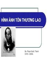 HÌNH ẢNH TỔN THƯƠNG LAO, bs. phạm quốc thành