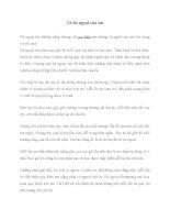 Bài văn Tả bà ngoại của em