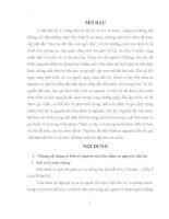 Bài tập học kì môn luật hôn nhân và gia đình: Nguyên tắc hôn nhân tự nguyện, tiến bộ qua chế định kết hôn và ly hôn
