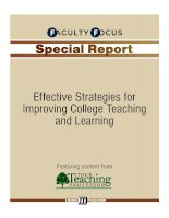 Effective Strategies for Improving College Teaching and Learning