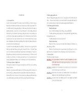 NGHIÊN CỨU VÀ ĐÁNH GIÁ TÁC ĐỘNG CỦA TỶ GIÁ LÊN CÁN CÂN THƯƠNG MẠI TẠI VIỆT NAM