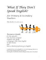 What If They Don't  Speak English?