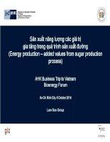 Sản xuất năng lượng các giá trị gia tăng trong quá trình sản xuất đường