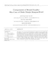 Components of Brand Equity: The Case of Binh Thuan Dragon Fruit