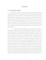 Điều tra bệnh virus lùn sọc đen tại huyện Tiền Hải – Thái Bình  trên cây lúa