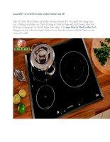 MUA bếp từ CHEFS ở đâu CHÍNH HÃNG GIÁ rẻ